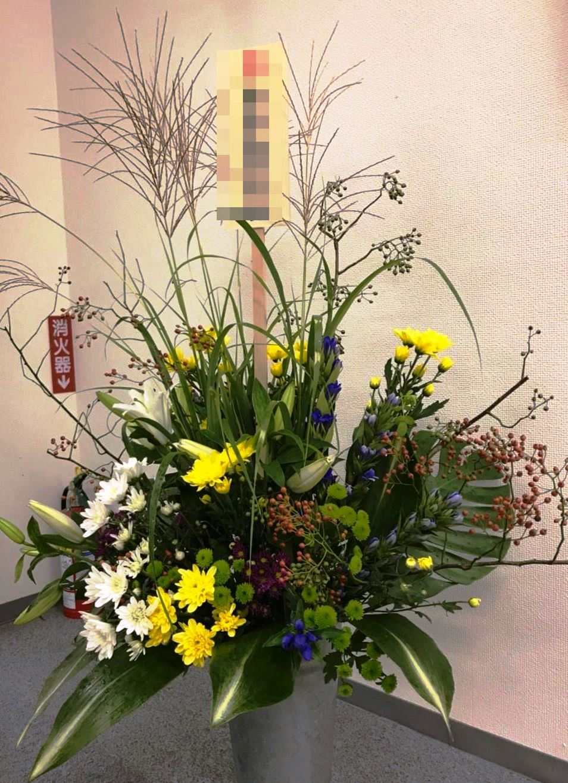 【ナオ花屋の納品事例142】横浜市関内長者町の法人企業様へ胡蝶蘭を配達しました!