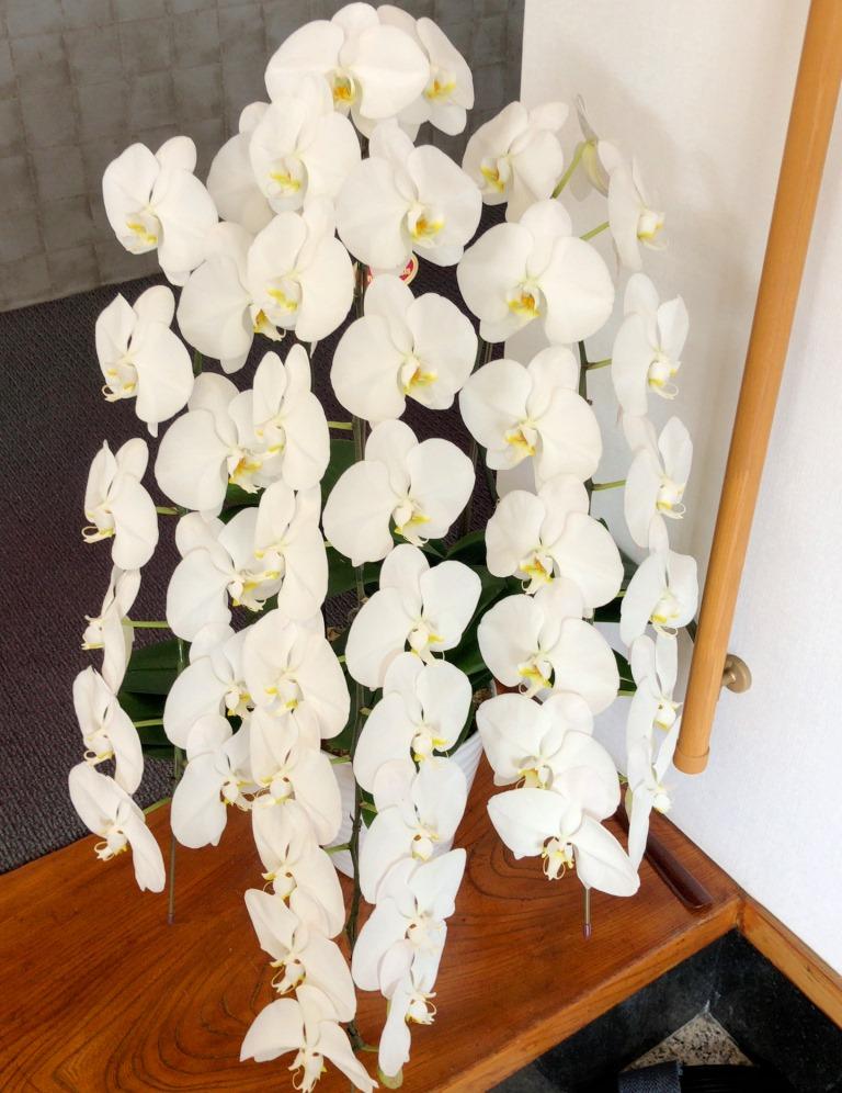 横浜市関内へ花束を即日当日配達しました!【横浜花屋の花束・スタンド花・胡蝶蘭・バルーン・アレンジメント配達事例426】