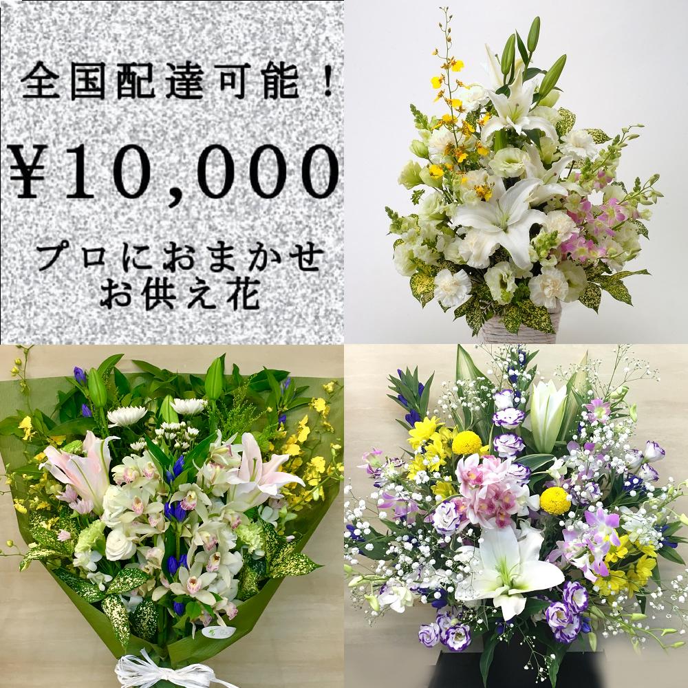 全国配送無料お供え花4