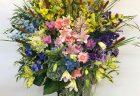 会社の移転祝用に観葉植物を配達しました。【横浜花屋の花束・スタンド花・胡蝶蘭・バルーン・アレンジメント配達事例486】