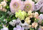 プロポーズ用バラの花束108本をみなとみらいへ配達しました。【横浜花屋の花束・スタンド花・胡蝶蘭・バルーン・アレンジメント配達事例509】