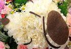 横浜市みなとみらいへ公演祝用のお花を配達しました。【横浜花屋の花束・スタンド花・胡蝶蘭・バルーン・アレンジメント配達事例498】