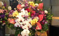 クラブチッタ川崎へスタンド花を配達しました。【横浜花屋の花束・スタンド花・胡蝶蘭・バルーン・アレンジメント配達事例550】
