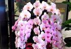 みなとみらいのホテルへバラの花束を即日当日配達しました。【横浜花屋の花束・スタンド花・胡蝶蘭・バルーン・アレンジメント配達事例593】
