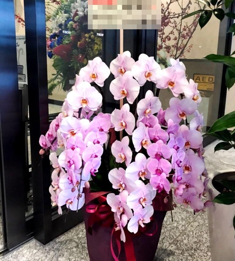 横浜市西区みなとみらいへ胡蝶蘭を配達しました。【横浜花屋の花束・スタンド花・胡蝶蘭・バルーン・アレンジメント配達事例594】