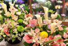 横浜市関内へ胡蝶蘭を即日当日配達させていただきました。【横浜花屋の花束・スタンド花・胡蝶蘭・バルーン・アレンジメント配達事例654】