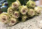 横浜市西区へバラ1本巻きを30束配達させていただきました。【横浜花屋の花束・スタンド花・胡蝶蘭・バルーン・アレンジメント配達事例657】