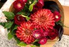 横浜市関内馬車道へ胡蝶蘭を即日当日配達させていただきました。【横浜花屋の花束・スタンド花・胡蝶蘭・バルーン・アレンジメント配達事例679】