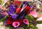 横浜市関内へ胡蝶蘭を即日当日配達しました。【横浜花屋の花束・スタンド花・胡蝶蘭・バルーン・アレンジメント配達事例693】