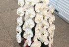 横浜市西区へ花束を即日当日配達しました。【横浜花屋の花束・スタンド花・胡蝶蘭・バルーン・アレンジメント配達事例727】