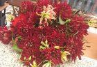 横浜市北仲通へお誕生日用の胡蝶蘭を配達しました。【横浜花屋の花束・スタンド花・胡蝶蘭・バルーン・アレンジメント配達事例738】