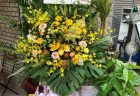 横浜市関内へアレンジメントを即日当日配達しました。【横浜花屋の花束・スタンド花・胡蝶蘭・バルーン・アレンジメント配達事例774】
