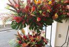 みなとみらいの某高級外車店様へ花束を即日当日配達しました。【横浜花屋の花束・スタンド花・胡蝶蘭・バルーン・アレンジメント配達事例801】