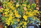 横浜市南区へ胡蝶蘭を即日当日配達しました。【横浜花屋の花束・スタンド花・胡蝶蘭・バルーン・アレンジメント配達事例816】