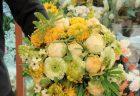 横浜市西区北幸へ胡蝶蘭を即日当日配達しました。【横浜花屋の花束・スタンド花・胡蝶蘭・バルーン・アレンジメント配達事例888】