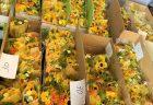 横浜市西区花咲町へフラワーアレンジメントを配達しました。【横浜花屋の花束・スタンド花・胡蝶蘭・バルーン・アレンジメント配達事例918】